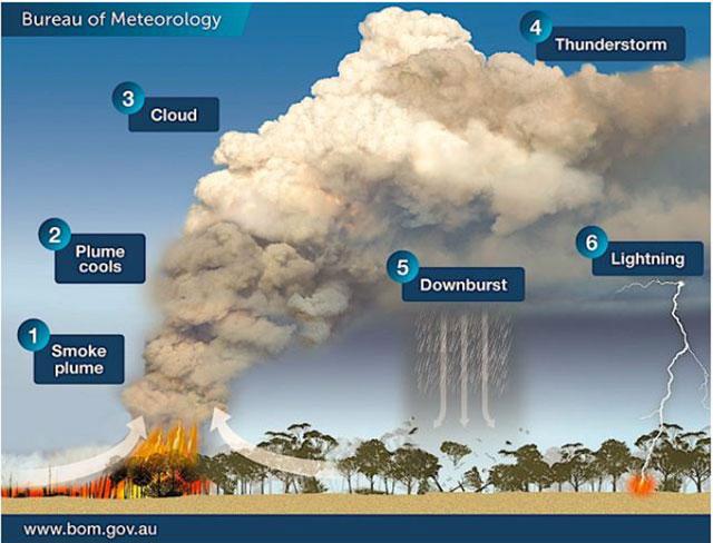 「火災積乱雲」が形成される仕組み(カナダ・ヴィクトリア州気象局資料より)。本年7月、北米、カナダ西部の広い範囲で停滞する高気圧が加熱中の鍋の「ふた」のように機能する「ヒートドーム」現象が発生し、異常な高温をもたらした。この熱波でカナダ・米国西部を中心に森林火災の延焼が続いた。大規模な火災が発生したのは13州の計80カ所以上、上空には、山火事による「火災積乱雲(pyrocumulonimbus)」が発生した。この雲は「火を吐く雲のドラゴン」と呼ばれ、竜巻や雷を発生させ、さらなる火災を引き起こす可能性もある