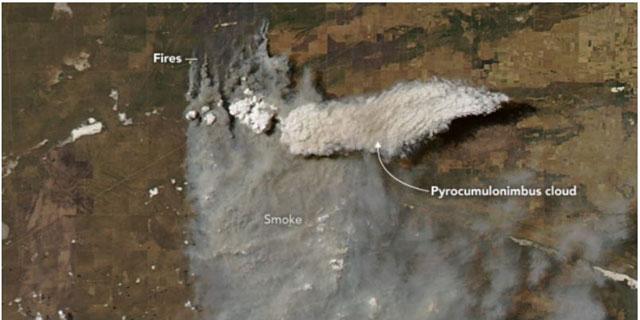 アルゼンチン上空の火災積乱雲の衛星画像(NASA資料より/2019年1月28日)